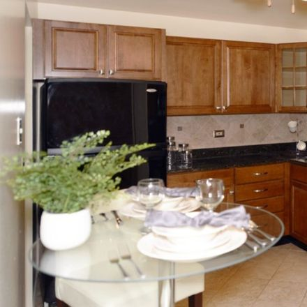 Rent this 1 bed apartment on East Rand Road in Arlington Heights, IL 60004