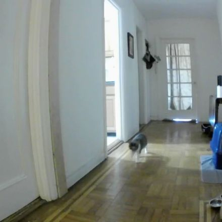 Rent this 1 bed room on 615 West 173rd Street in New York, NY 10033