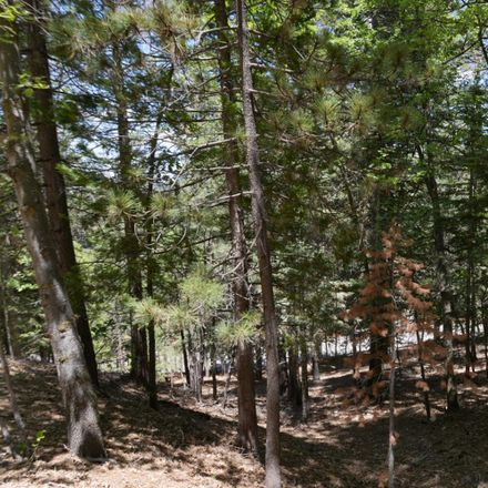 Rent this 0 bed apartment on Thunderbird Dr in Lake Arrowhead, CA