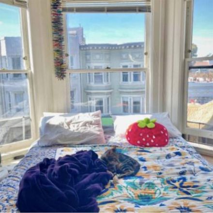 Rent this 1 bed room on 1401;1405;1409;1415;1419 Haight Street in San Francisco, CA 94117