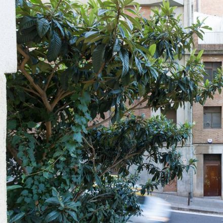 Rent this 5 bed apartment on Carrer Mare de Déu del Carmel in 08023 Barcelona, Spain