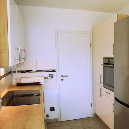 Rent this 4 bed apartment on 40239