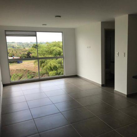 Rent this 1 bed apartment on Sendero de los Ocobos in Comuna Quimbaya, Capital