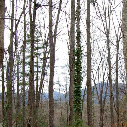 Rent this 0 bed apartment on Overlook Dr in Rabun Gap, GA