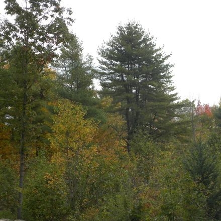 Rent this 0 bed apartment on 28 Shire Lane in Turner, ME 04282