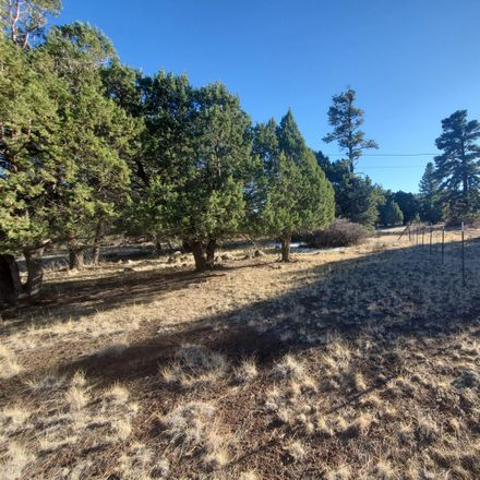 Rent this 0 bed house on Curry Ln in Lakeside, AZ