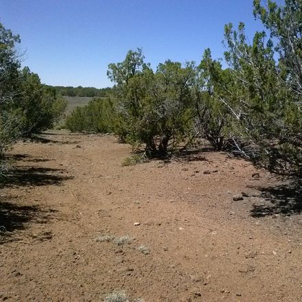 Rent this 0 bed house on Co Rd 8026 in Concho, AZ