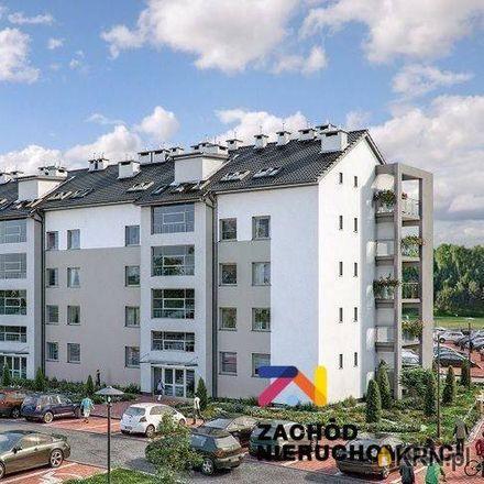 Rent this 3 bed apartment on Bachusik Belferus-Zenepus in Aleja Konstytucji 3 Maja, 65-454 Zielona Góra