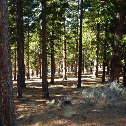 Rent this 0 bed house on Cedar Ln in Calpine, CA