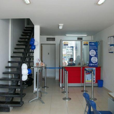 Rent this 0 bed apartment on Avenida Carrera 31 in Dique, Cartagena
