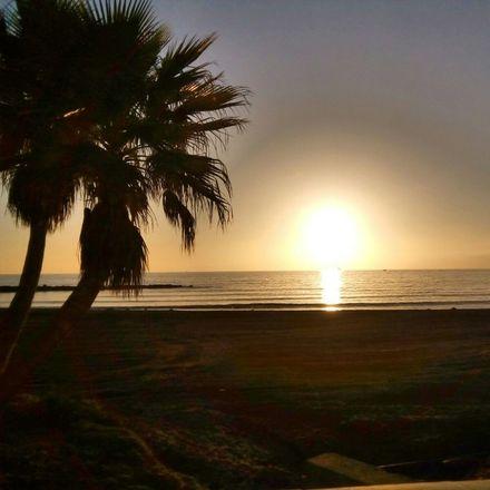 Rent this 1 bed apartment on Playa de El Zapillo in Avenida del Mediterráneo, 04007 Almeria