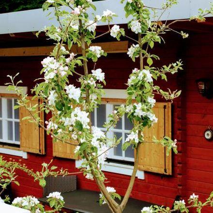 Rent this 1 bed apartment on Siedersgraben 25 in 3400 Gemeinde Klosterneuburg, Austria