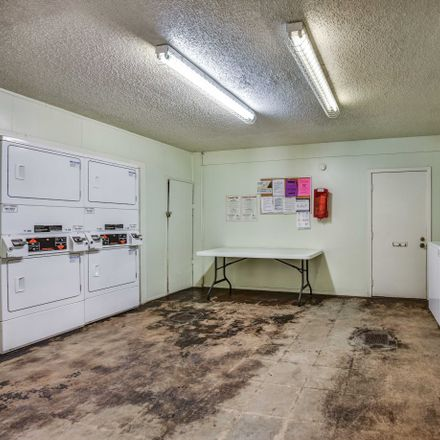 Rent this 1 bed apartment on West North Loop Boulevard in Austin, TX 78756