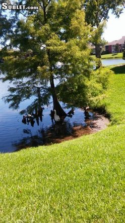 Rent this 2 bed apartment on 5919 Auvers Boulevard in Union Park, FL 32807