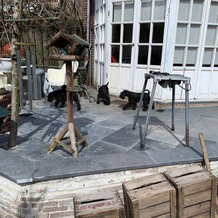 Rent this 1 bed apartment on Groenewoudseweg in 6524 TN Nijmegen, Netherlands