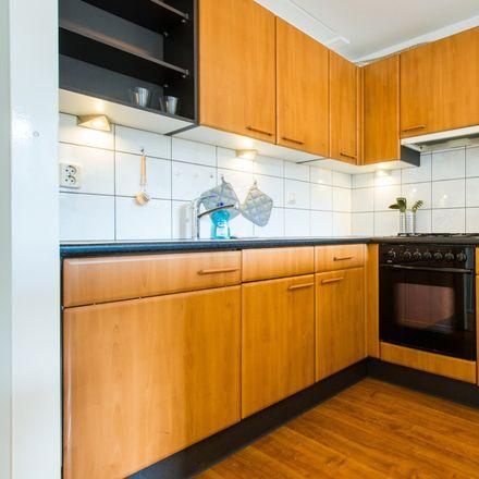 Rent this 1 bed apartment on Passeerdersstraat in 1016 XB Amsterdam, Países Bajos