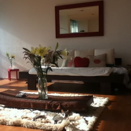 Rent this 1 bed apartment on Miguel Hidalgo in Del Bosque, MEXICO CITY