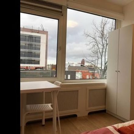 Rent this 1 bed room on Delft in Voorhof, SOUTH HOLLAND