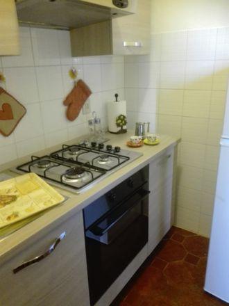 Rent this 1 bed apartment on Via di Mezzana in 3, 56124 Pisa PI
