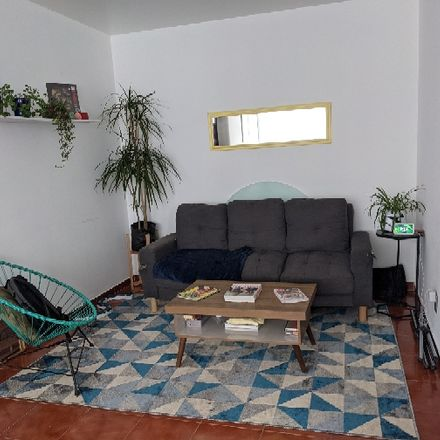 Rent this 1 bed room on Calle Tehuantepec in Colonia Roma Sur, 06760 Mexico City