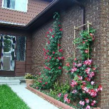Rent this 1 bed house on Toronto in Pleasant View, ON
