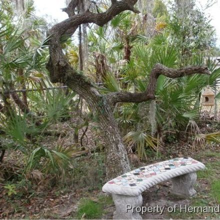 Rent this 3 bed apartment on 10288 Tooke Lake Blvd in Brooksville, FL