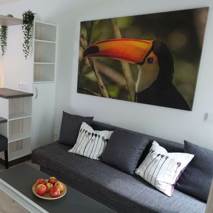 Rent this 1 bed apartment on Leopoldstraße 204b in 80804 Munich, Germany
