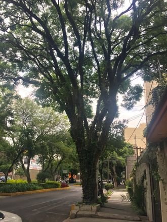 Rent this 1 bed apartment on Merced Gómez in MEXICO CITY, MX
