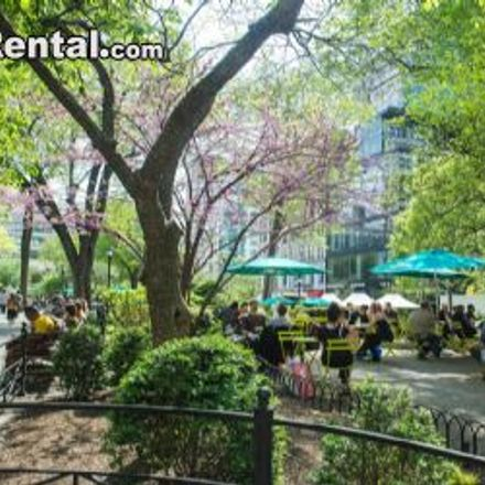 Rent this 2 bed apartment on 220 West 15th Street in New York, NY 10011