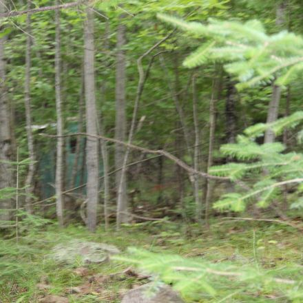 Rent this 0 bed apartment on E Maxton Rd in Drummond Island, MI