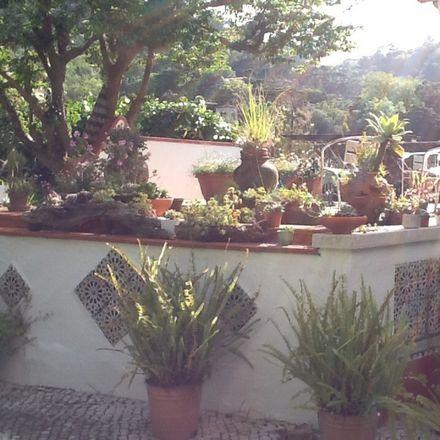 Rent this 1 bed house on Sintra in São Pedro de Penaferrim, ÁREA METROPOLITANA DE LISBOA